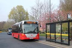Diamond Bus 30118 0739hrs Halesowen to Bromsgrove 170419 (return2layerroad) Tags: diamondbus halesowen bromsgrove scaniaomnilink yt61fem worcestershire