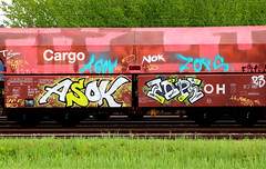 Graffiti on Freights (wojofoto) Tags: amsterdam nederland netherland holland graffiti streetart cargotrain vrachttrein freighttraingraffiti freighttrain freights fr8 wojofoto wolfgangjosten asok zops