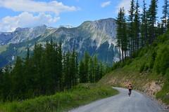 Danny? (*Vasek*) Tags: austria österreich europe mountains nikon d7100 outdoors nature