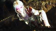 H2135's Fantasy Series5 [UNP/UBS] (Aloreg Reminus) Tags: skyrim snapdragon