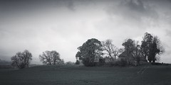 the view from the bus stop (ShinyPhotoScotland) Tags: moody dull clouds dusk panorama hdr snapseed affinityphoto field land scenery aberuthven church ruin building sonya7r3 toned landscape scotland perthshire rural