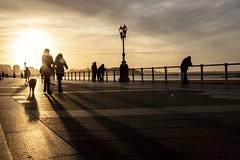Paseando por San Lorenzo. Gijón. (David A.L.) Tags: asturias asturies gijón xixón paseando sol luz playadesanlorenzo paseodelmuro
