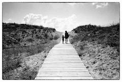 (yoannpupat) Tags: outside sand 35mm filmphotography konicaautos3 kodak trix400 bw noiretblanc analogic argentique filmisnotdead istillshootfilm believeinfilm grainisgood