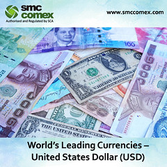 Currency Trading Investment in Dubai (smccomex) Tags: