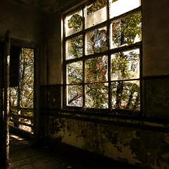 abandoned beauty (Francisco (PortoPortugal)) Tags: 0792019 20141025fpbo3855 urbex urbanexploration ruinas ruins abandoned quadrada square caramulo portugal