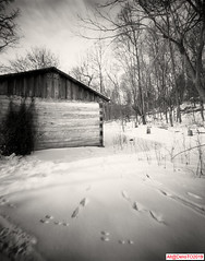 Winter residence V (DelioTO) Tags: 4x5 architectures beaches blackwhite cliff d23 f250 fall fomapan100 garden historical holiday lake landscape november ontario pastures pinhole r091100 toned trails trip woods