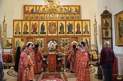 31. Пасхальный молебен в Адамовке 29.04.2019