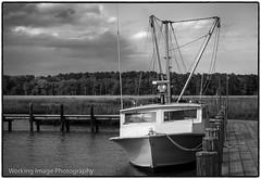 Elliott Island (Working Image Photography) Tags: fujifilm xt20 easternshore maryland dorchestercounty elliottisland blackandwhite bw marina wharf boat workingboat waterman dock
