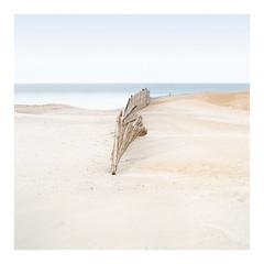 Adaptation (Artery-Crea) Tags: sea fence colourphotography seascape landscape france sand beach fineartphotography longexposure juliencarcano