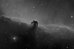Horsehead Nebula - Hydrogen Alpha (Astrolights.de) Tags: astrophotography horseheadnebula ic434 astro hydrogenalpha zwoasi183mmpro