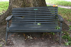 HBM Easter Bench (Omunene) Tags: bench benchmonday easterbench