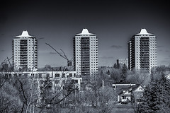 Skyline ... (c)rebfoto (rebfoto..away on assignment..) Tags: skyline skylineottawacanada rebfoto monochrome blackandwhite urban urbanscape cityscape city