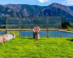 Wooden Target (Matthew Warner) Tags: matthewwarner spring columbiarivergorgeous washington pnwonderland stevenson skamaniacounty axethrowing target 2019 columbiariver columbiarivergorge