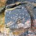 Clast-rich impact pseudotachylite (Sudbury Breccia, Paleoproterozoic, 1.85 Ga; Windy Lake Northwest roadcut, Sudbury Impact Structure, Ontario, Canada) 34
