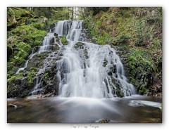 Pb_4300005 (calpha19) Tags: imagesvoyagesphotography adobephotoshoplightroom olympusomdem1mkii zuiko ed1260swd pauselongue longexposures waterfall cascades vosgienne gerardmer vosges grandest filtrenisi cplnisi nd64nisi creusegoutte flickrsexplore ngc printemps 2019 explore