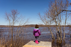 Flood Watcher (kandisebrown) Tags: 2019 fredericton newbrunswick sonya7iii april2019 zara babybrodin 2yearsold spring brodinbackyard