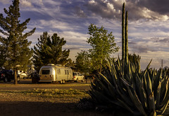 Airstream and Agave at Sunset