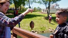 2019_TTG_Raleigh NC Hope Reins 10 (TAPSOrg) Tags: taps tragedyassistanceprogramforsurvivors tapstogethers raleigh northcarolina hopereins 2019 military outdoor horizontal fishing kids children candid