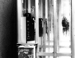 en voie de disparition... (photosgabrielle) Tags: photosgabrielle montreal montréalcentreville bwphotography bwmontreal streetphotography urban urbain monochrome cabinetelephonique telephonebooth city ville people gens