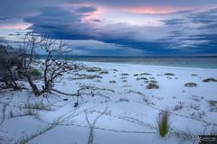 Hyams beach (Dreamtime Nature Photography) Tags: hyamsbeach jerisbay nsw australia newsouthwales beach ocean plage mer canon landscape paysage dreamtimenaturephotography