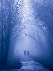 Together (stephenbryan825) Tags: merseyside woolton art branches companionship conversation couple dialogue discussion dramaticlight fog foggy haze leaves man manandwoman mist moody morning people talk talking togetherness trees trunks woman