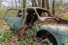 38-Portières de 4CV (Alain COSTE) Tags: 2019 forêt hautevienne lavarache limousin nikon ocb printemps randonnée