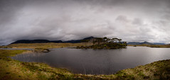 Connemara- (massimiliano lugli) Tags: irlanda photography acqua alberi d610 ireland irelandsky landscape massimilianolugli nikon nikond610 nuvole orizzontale paesaggio panorama photo sky verde