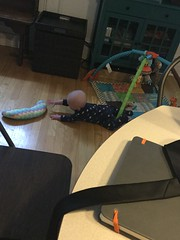 """Sam Tries to Crawl • <a style=""""font-size:0.8em;"""" href=""""http://www.flickr.com/photos/109120354@N07/33875242718/"""" target=""""_blank"""">View on Flickr</a>"""