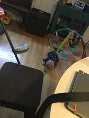 """Sam Tries to Crawl • <a style=""""font-size:0.8em;"""" href=""""http://www.flickr.com/photos/109120354@N07/33875244098/"""" target=""""_blank"""">View on Flickr</a>"""