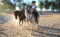 Gurias de Jaguarão (Eduardo Amorim) Tags: gaúcha gaúchas gaucha gauchas mulher mujer woman femme donna pampa campanha fronteira jaguarão riograndedosul brésil brasil sudamérica südamerika suramérica américadosul southamerica amériquedusud americameridionale américadelsur americadelsud brazil eduardoamorim cavalos caballos horses chevaux cavalli pferde caballo horse cheval cavallo pferd crioulo criollo crioulos criollos cavalocrioulo cavaloscrioulos caballocriollo caballoscriollos