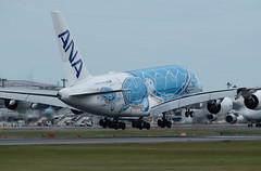 JA381A 着陸 (edo420) Tags: d5 500mmf56 pflens pfレンズ 飛行機 airplane ja381a 全日空 ana airbus エアバス a380 成田 narita chiba 千葉 japan