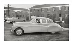 Vehicle Collection (5568) - Jaguar (Steve Given) Tags: familycar motorvehicle automobile