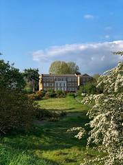 Sunshine on Vanbrugh Park (marc.barrot) Tags: shotoniphone blooms trees landscape park uk se3 london eastgreenwich blackheath vanbrughpark