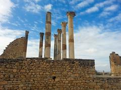 Capitoline temple in Volubilis 06 (dorieo21) Tags: column columna volubilis rona romano temple templo morocco marruecos maroc