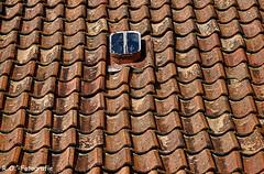 Altes Dach / Old Roof (R.O. - Fotografie) Tags: altes dach old roof alte dachziegel roofing tile rofotografie nieheim kreis höxter dachfenster dormer window skylight panasonic lumix dmcgx8 dmc gx8 gx 8 olympus mzuiko premium digital 60mm f28 macro outdoor outside