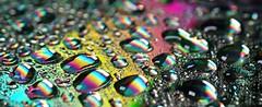 365 - Image 122 - Rainbow world... (Gary Neville) Tags: 365 365images 6th365 photoaday 2019 sony sonycybershotrx100vi rx100vi vi raynox garyneville