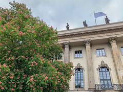 (Cjin99) Tags: berlin germany de unterdenlinden humboldtuniversität humboldtuniversitätzuberlin