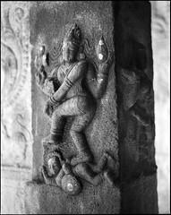 (Jerry501) Tags: onfilm travel india temple mediumformat 120film pentax67 monochrome blackandwhite bnw film expired kodak125px analog