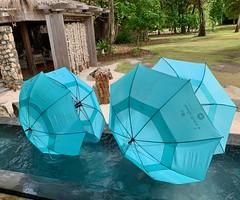 Umbrella Tie Fighters