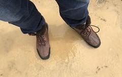 #PointLobos #SutroBaths (Σταύρος) Tags: standinginwater inapuddle brownboots uggboots ugg lookingdown mylegs greek stavros fortmiley sanfrancisco sfist pointlobos sutrobaths sf city thecity санфранциско sãofrancisco saofrancisco サンフランシスコ 샌프란시스코 聖弗朗西斯科 سانفرانسيسكو kalifornien californië kalifornia καλιφόρνια カリフォルニア州 캘리포니아 주 cali californie california northerncalifornia カリフォルニア 加州 калифорния แคลิฟอร์เนีย norcal كاليفورنيا