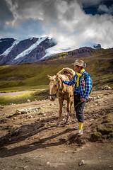 Quetchua (Luis Sousa Lobo) Tags: 738a18542 peru peruvian peruano andes man horse canon 5d mark iv 1740 quetchua mountains andino
