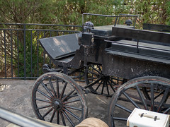 Thestral Carriage (jfer21) Tags: olympusem5markii florida orlando universal islandsofadventure wizardingworld harrypotter hogsmeade thestral carriage