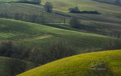 12012014-DSC_2048-1 (stefano.paglialunga1) Tags: green outdoors provinciamacerata tolentino campagna colline regionemarche beautiful reflex colors natura nikon nikond7000