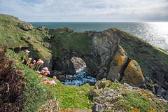 Belle-île côte sauvage (tbourley) Tags: bretagnebrittany morbihan belleîleenmer côtesauvage seascape nikond7100 tokina wildangle
