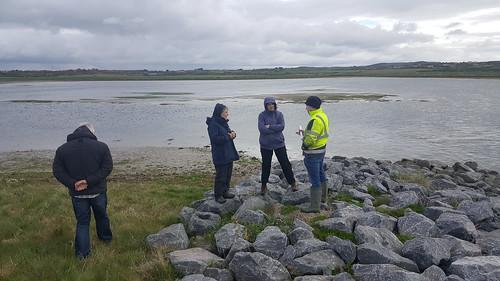 Tramore Backstrand compensatory wetland, April 2019