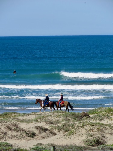 Surfriders And Surf Riders