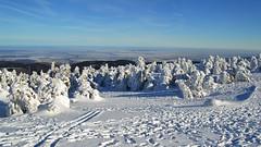 Winter auf dem Brocken (Tobi NDH) Tags: landscape landschaft winterlandschaft brocken winter schnee snow natur nature oberharz harz tree sky germany deutschland saxonyanhalt sachsenanhalt schneelandschaft