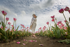 Tulip Season (Photo Alan) Tags: vancouver canada tulip tulipfield tulipfestival flower seaon