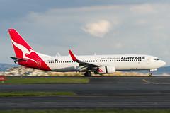 Qantas Boeing 737 (Daniel Talbot) Tags: akl auckland aucklandairport aucklandregion b738 boeing boeing737 boeing737800 nzaa newzealand northisland qantas teikaamāui vhvzz aircraft airplane airplanes airport autumn aviation maker oceania plane season seasons transportation