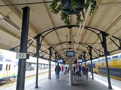 IMG_20190426_091656 (tak.wing) Tags: netherlands alkmaar cheesemarket